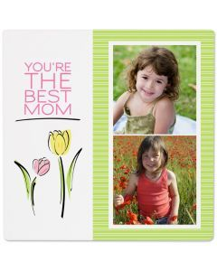 Tulips Photo Panel